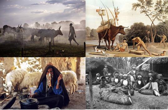 pastoralismo